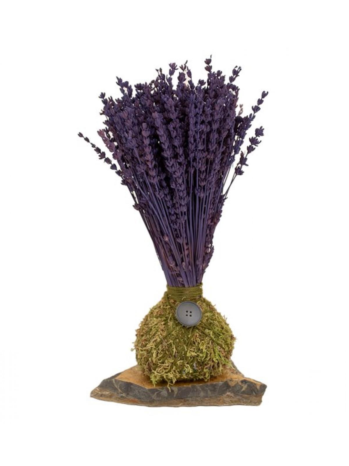 Lavanta Kokedama Purple