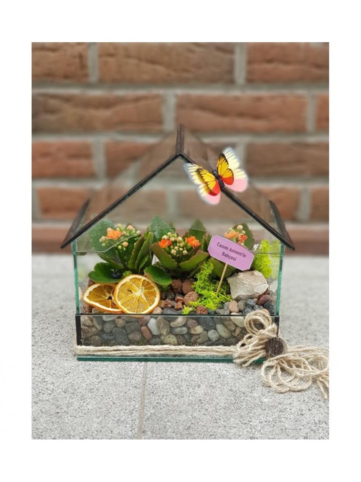 House Garden 4